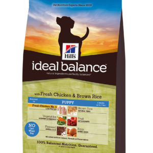 IB Canine Adult con Pollo y Arroz Integral
