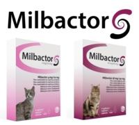 Milbactor Gatos