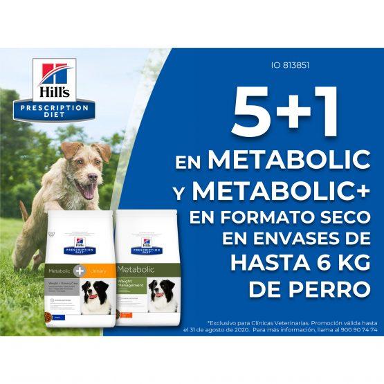 5+1 en Metabolic y Metabolic+