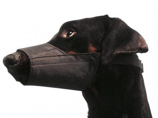Bozales de nylon para perros, EICKEMEYER